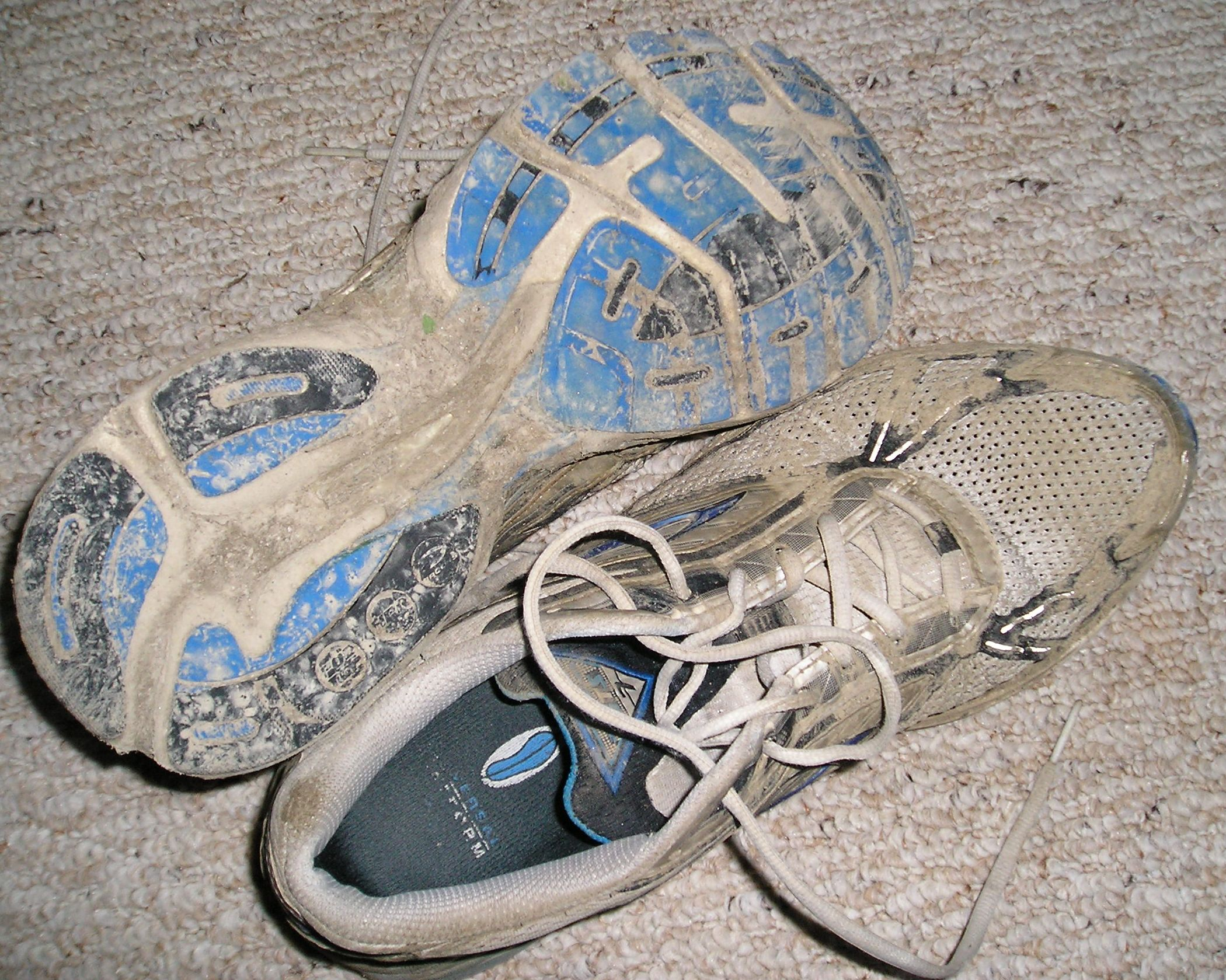 Thoughts On Running Shoes